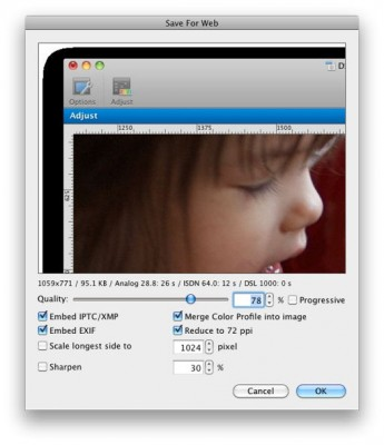 Image export dialogs show incorrect previews of translucent images